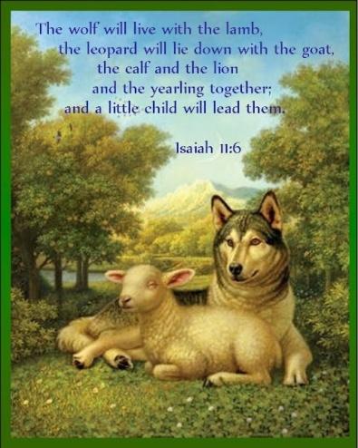 Isaiah 11 6